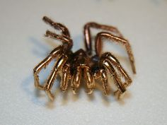 Spider coated in gold.