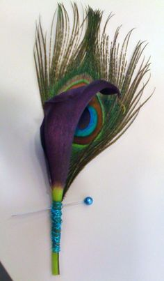 wedding boutonniere of dark purple calla lily and peacock feather