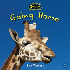 $4.25 Going Home: Nancy the giraffe finds a little bird who is crying. Why is the little bird so upset? Can Nancy help her?