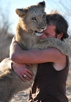 Sirga, a little lioness rejected by the pride is rescued by this guys.