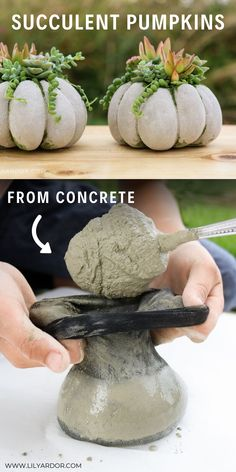 Here's how you can make cute concrete pumpkins super easy! You'll need t… Here's how you can make cute concrete pumpkins super easy! You'll need to fill some tights and add rubber bands. Get more photo about subject related with… Continue Reading → Cement Art, Concrete Crafts, Concrete Projects, Diy Concrete Planters, Concrete Garden, Diy Planters, Pumpkin Crafts, Diy Pumpkin, Fall Crafts