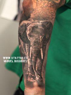 Los elefantes africanos son los animales terrestres más grandes de la tierra.Sus…