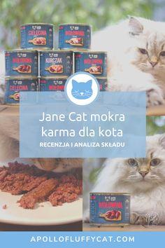 Kolejną polską karmą dla kotów, która przykuła moją uwagę jest Jane Cat. Postanowiłam ją kupić, przetestować i podzielić się moją recenzją tej karmy. Czy jest taka dobra jak się wydaje na pierwszy rzut oka? Karma, Dog Food Recipes, Blog, Dog Recipes, Blogging