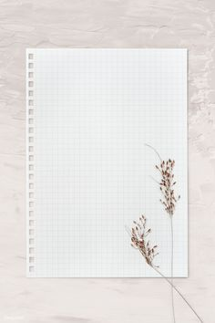 Blank white paper template with dried leaves Handwritten Text, Instagram Frame Template, Powerpoint Background Design, Photo Collage Template, Polaroid Frame, Framed Wallpaper, Paper Wallpaper, Instagram Background, Story Instagram