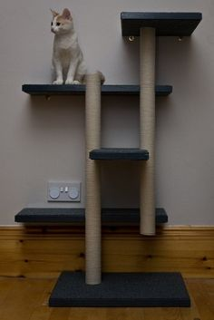 So many cat tree, scratcher & catwalk ideas! This is made out of scrap wood and recycled materials & fastened to the wall. My cats are tough on everything, two boys will be, so this gave me lots of ideas!