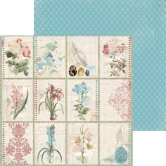 Bo Bunny - Garden Journal Collection - 12 x 12 Double Sided Paper - Notebook at Scrapbook.com