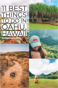 Best Things to do in Oahu (You Probably Haven't Heard of) - Avenly Lane Travel Hawaii Vacation Rentals, Hawaii Destinations, Hawaii Honeymoon, Hawaii Travel, Vacation Spots, Travel Usa, Holiday Destinations, Vacation Ideas, Italy Travel