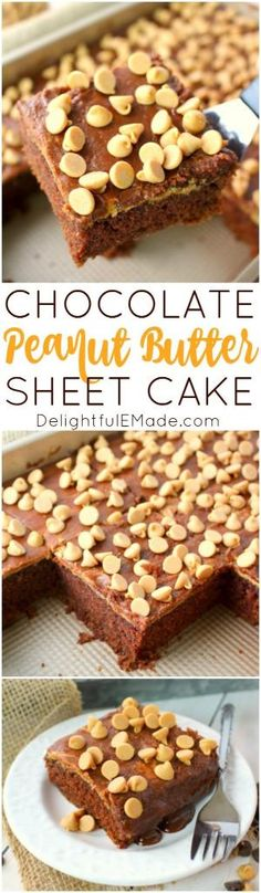 Chocolate sheet cake doesn't get much better than this! Moist, delicious chocolate cake is topped with a layers of creamy peanut butter, chocolate icing and then loads of peanut butter chips. This is perfect for anyone that loves an amazing and Peanut Butter Sheet Cake, Peanut Butter Desserts, Peanut Butter Chips, Best Dessert Recipes, Fun Desserts, Delicious Desserts, Cake Recipes, Tasty Chocolate Cake, Chocolate Desserts