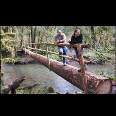 Simple log bridge