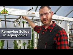 Removing Solids in Aquaponics - YouTube