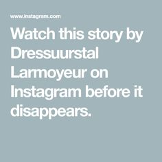Watch this story by Dressuurstal Larmoyeur on Instagram before it disappears. Dutch Warmblood, Warmblood Horses, Dressage Horses For Sale, Family Affair, Non Profit, Followers, Watch, Instagram, Posts