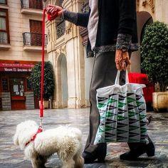 #walkies    #streetphotography #dog #dogwalking #streetphoto Dog Walking, Street Photography, Straw Bag, Dogs, Fashion, Moda, Fashion Styles, Pet Dogs, Doggies
