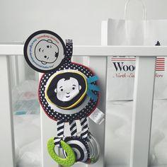 Bring it on #baby #toy  #traveltoy #allinone ✔️ #wimmerferguson #manhattantoy [ working on baby's website ]  #excited #mommytobe
