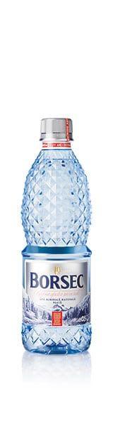 Borsec-plata-0,5L-PET-2017 Barbarella, Water Bottle, Drinks, Food, Silver, Freiburg, Shelf, Drinking, Beverages