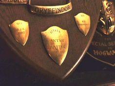 Galardon de  quidditch