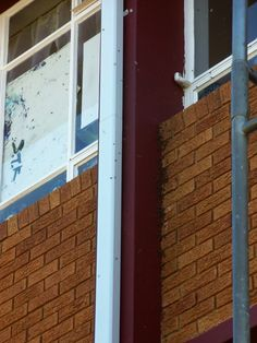 Bee removal in Johannesburg, removed bees in a crack in a wall school R650 FLAT RATE