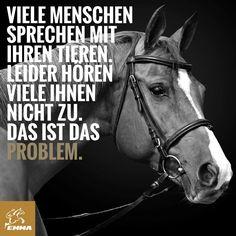 Pferdesprüche & Pferd nervös-emma-pferdefuttershop.de