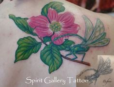 Rework on a tattoo of a dragonfly, adding a dogwood blossom and branch.