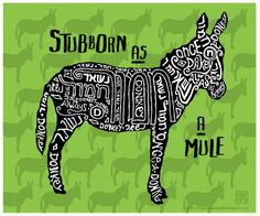 Southernism - Stubborn as a Mule