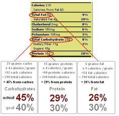 Zone Diet basic principle