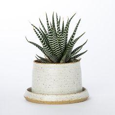 Stak Ceramics Planter + Tray