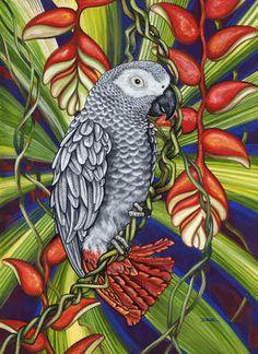 Gray Parrot by Denise Freeman ~ tropical art