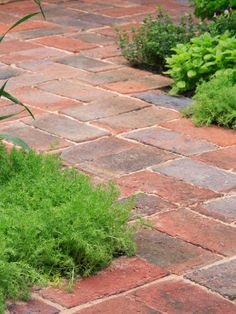 The gardening and landscaping experts at HGTV.com teach you about the cost, durability and color options for some of the most popular landscape flooring materials.