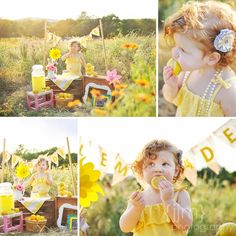Lemonade Stand   JJM Photography