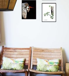 new collection illustrations wall design art catchii inspiration