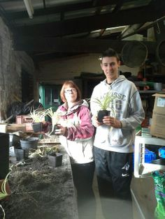 Lindsey and Josh repotting spider plants at the Firs experimental grounds. The plants will be sold at the Faculty of Life Sciences open day later in