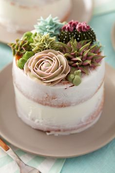 Succulent Cakes Learn how to use the decorating tips in your collection to create amazing blooming succulents. Great for tea parties, birthdays, bridal showers and weddings, these stunning mini cakes are a great way to showcase your decorating skills. Pretty Cakes, Beautiful Cakes, Amazing Cakes, Cake Decorating Designs, Cake Decorating Techniques, Decorating Tips, Cool Cake Designs, Mini Cakes, Cupcake Cakes