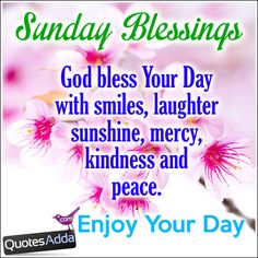 Elegant Good Morning Have A Blessed Sunday Quotes