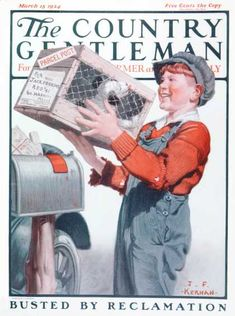 Country Gentleman - 1924-03-15: Puppy by Parcel Post (J.F. Kernan)