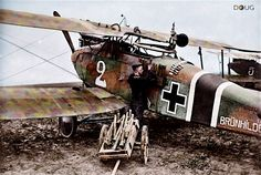 Halberstadt CL/II Schlasta 27b - 1917/18