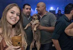 World's Largest Dogs - Gallery | eBaum's World Big Dogs, Large Dogs, Worlds Biggest Dog, Funny Photoshop Pictures, Night Club, Worlds Largest, Memes, Brazil, Kicks