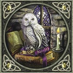 Celtic Knots Wizard's Owl Diamond Painting Kit makes stunning diamond art for home decoration! This DIY diamond painting kit has everything you need to Cross Stitching, Cross Stitch Embroidery, Cross Stitch Patterns, Stitching Patterns, Embroidery Patterns, Hand Embroidery, Buho Tattoo, Celtic Cross Stitch, Fantasy Cross Stitch
