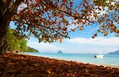 crystal clear and peaceful beach at Koh Kradan - Trang Province, Thailand. Don't miss out!!