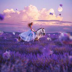 Violet flower storm in lavender fields of Valensole, Provence, France, mode Horse Girl Photography, Fantasy Photography, Creative Photography, Photography Ideas, Lavender Aesthetic, Valensole, Beautiful Fantasy Art, Beautiful Horses, Princess Aesthetic