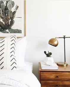 Bedroom Cactus