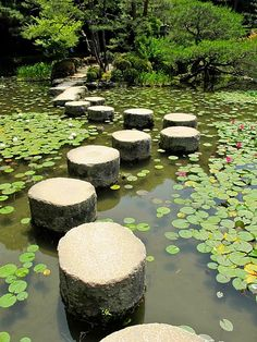 Cross this way to the fairies....I want a large koi pond!