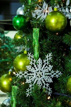 GP Plantscapes #xmastreeswork - Twitter Search