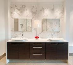 Elegant. Whole house remodel, Falls Church VA modern bathroom