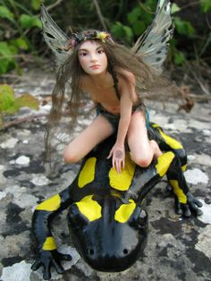 Fairy Riding Salamander