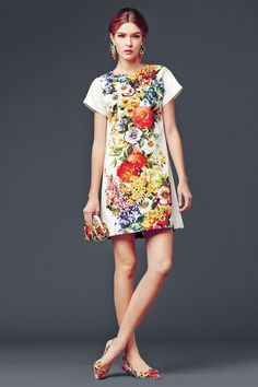 dolce and gabbana collection