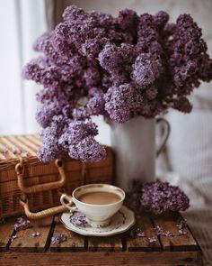 Maddy and Summer Coffee Love, Ramen, Cauliflower, Bliss, Anna, Canning, Vegetables, Breakfast, Health