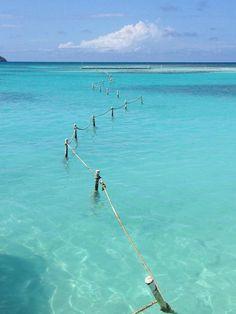 Stingray City Antigua ( Antigua and Barbuda)