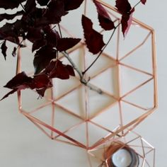 Cinnamon Home - Obstkorb, Kupfer