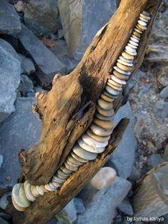 land art in hungary-stone balance and driftwood by tamas kanya