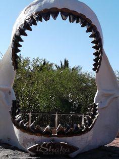 UShaka Marine World, KwaZulu-Natal Durban South Africa, South Afrika, Time For Africa, African Holidays, City By The Sea, Kwazulu Natal, North Beach, Peaceful Places, Africa Travel