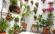 Taiga/Shutterstock.com